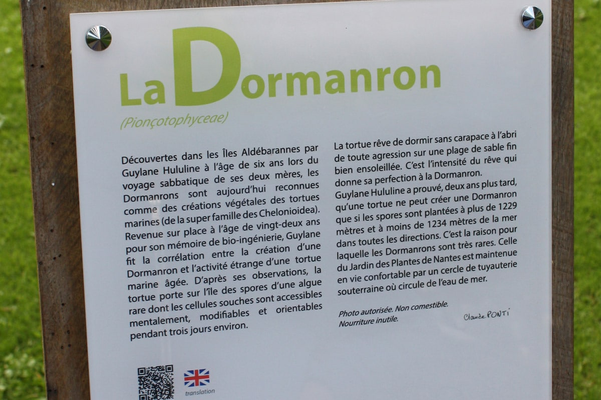 Explication de Claude Ponti sur le Dormanron